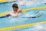 水泳トリミング済み (800x548).jpg